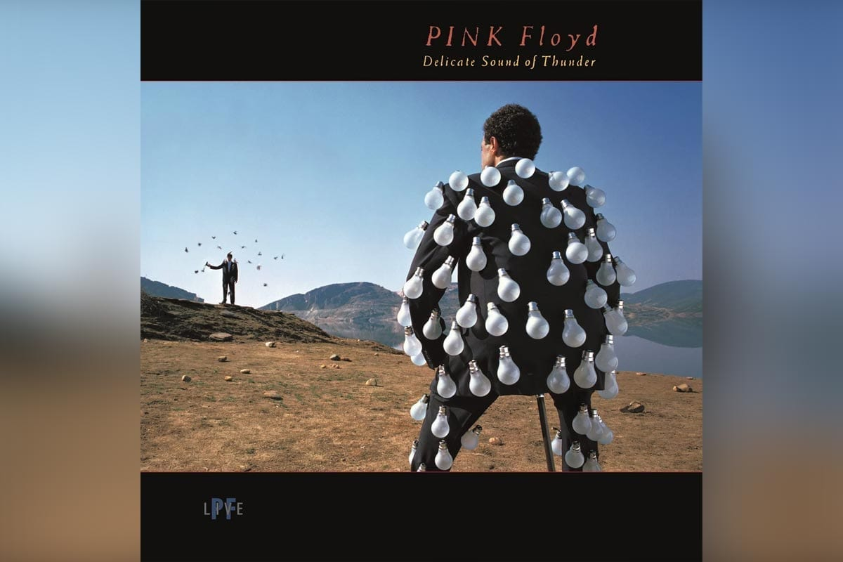 Pink Floyd's Delicate Sound of Thunder album cover